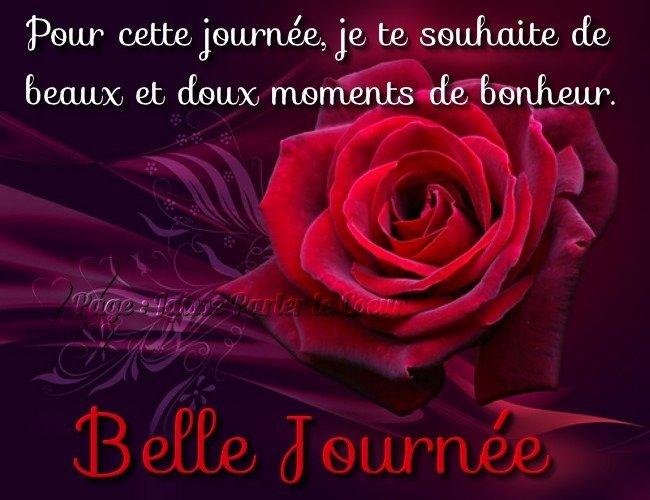 Bonjour-belle Journée - rose rouge