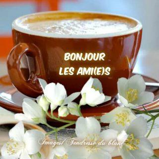 Bonjour les amis café