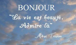 Bonjour- La vie- Phrase