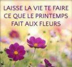 Bonjour-phrases-photos (38)
