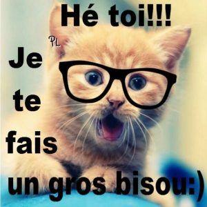 messages bonjour gros bisou