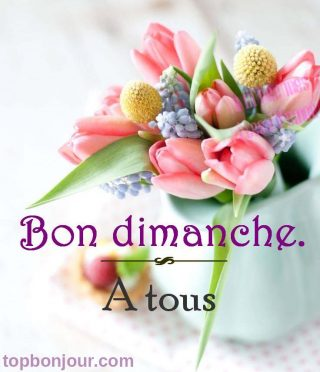Bon dimanche fleurs