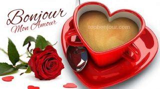 bonjour amour