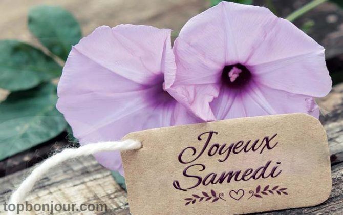 Samedi fleurs