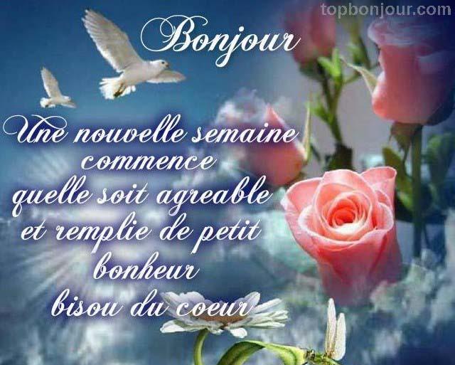 bonjour phrase